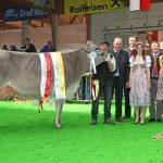 Siegerin Mittlere Kuhklassen und Euterchampion Jongleur Sarina