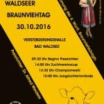 WaldseerBVTag2016