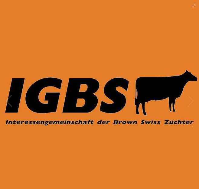 IGBS-Schau St. Gallen