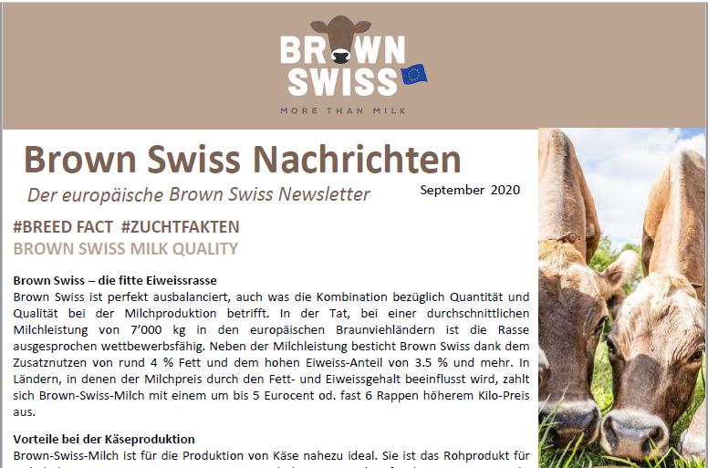September 2020 Newsletter des europäische Brown Swiss-Zeitschrift